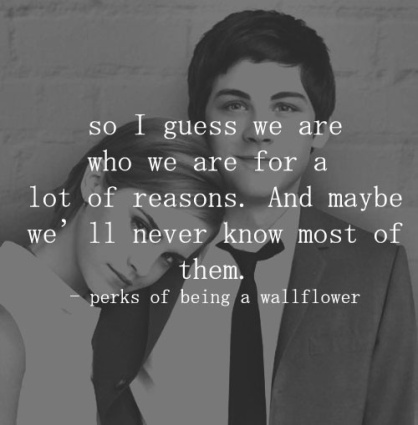 the-perks-of-being-a-wallflower-the-perks-of-being-a-wallflower-fans-35237804-500-509