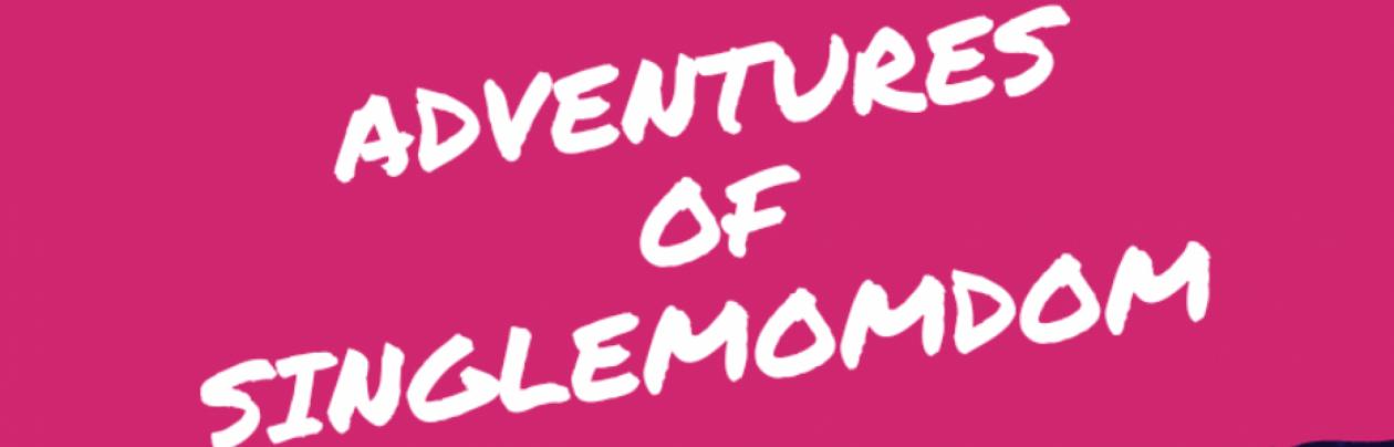 Adventures of SingleMomDom